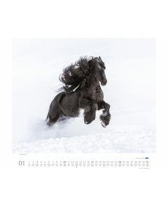 Wandkalender Friesen 2021 - DUMONT 64673
