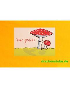 Postkarte Fliegenpilz