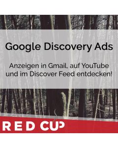 Google Discovery Ads